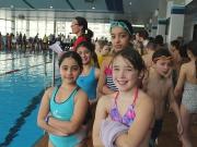 Kreismeisterschaft Schwimmen 2016
